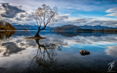 Wanaka Tree - How This Image Was Created