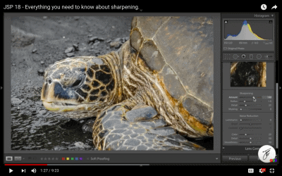 Everything You Need to Know About Sharpening in Lightroom and Photoshop
