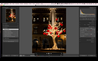 Lightroom Love & The Power of Positive Feedback
