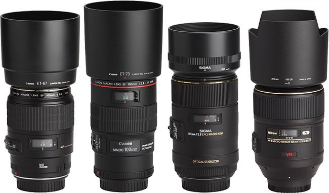 100mm Macro Lens Comparison with Hoods