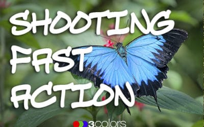 Tips for Shooting Fast Action!